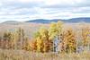 7766 Browns Hill Development Oct 13 2010